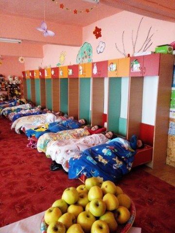 Extrêmement Roumanie - Terre des Enfants IS28